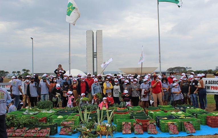 Agricultores pressionam Congresso pela derrubada de vetos de Bolsonaro a auxílio
