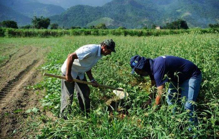 Agricultura familiar pode sofrer colapso com vetos de Bolsonaro a medidas urgentes