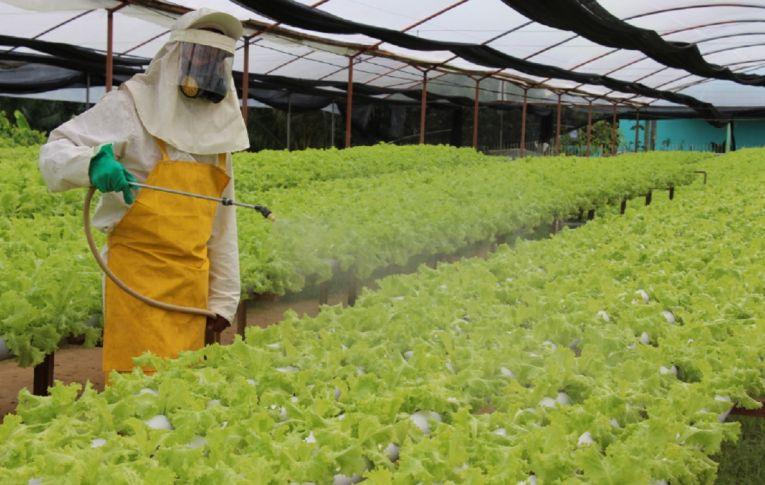 Anvisa encontra resíduos de veneno 'chumbinho' na comida do brasileiro