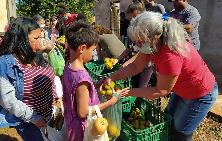 Assentamento do MST no Paraná doa 8 toneladas de alimentos a famílias do estado