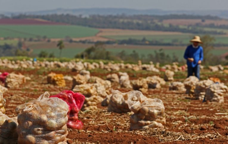 Bolsonaro age para sufocar agricultura familiar e pequenos produtores