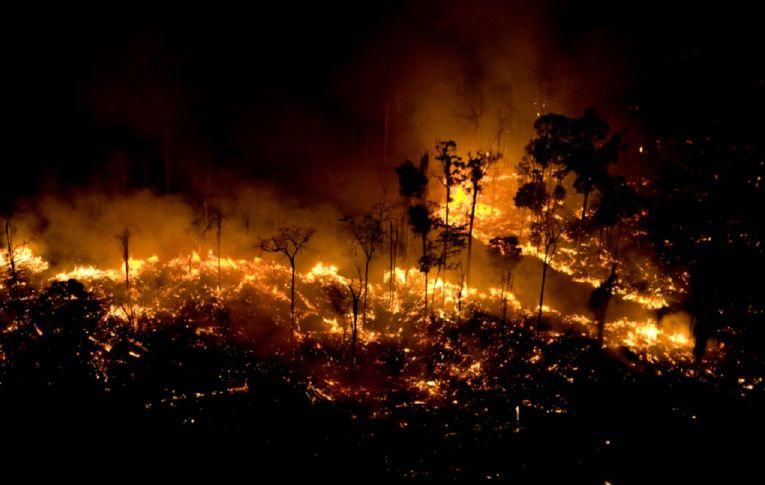 Brasil só terá importância geopolítica se preservar a Floresta Amazônica