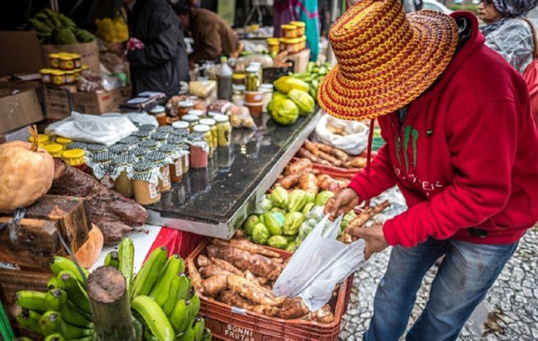 Brasil tem tudo para adotar a agroecologia como modelo na produção de alimentos