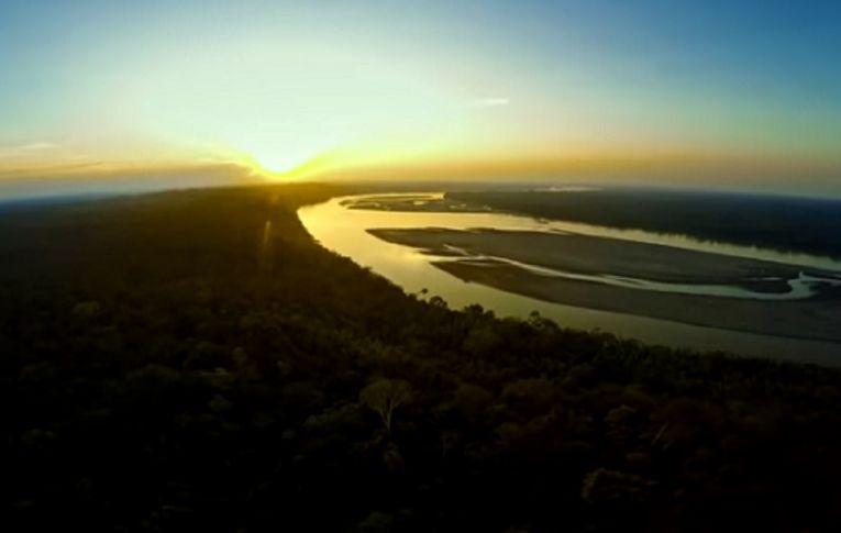 Com Bolsonaro, Amazônia tem a maior taxa de desmatamento desde 2008