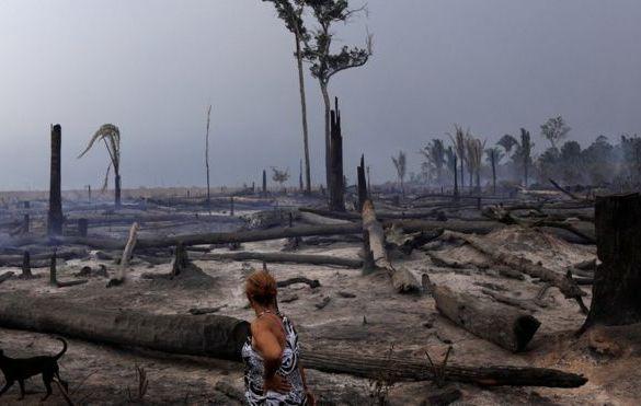 Congresso pode liberar fazendas para desmatar até 50% de terras na Amazônia