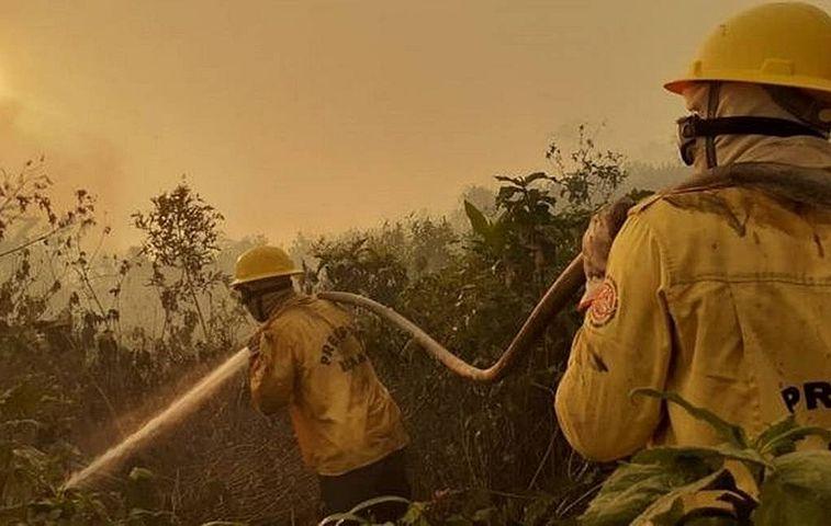Denúncias apontam falta de apoio do governo federal no combate à queimada no Pantanal