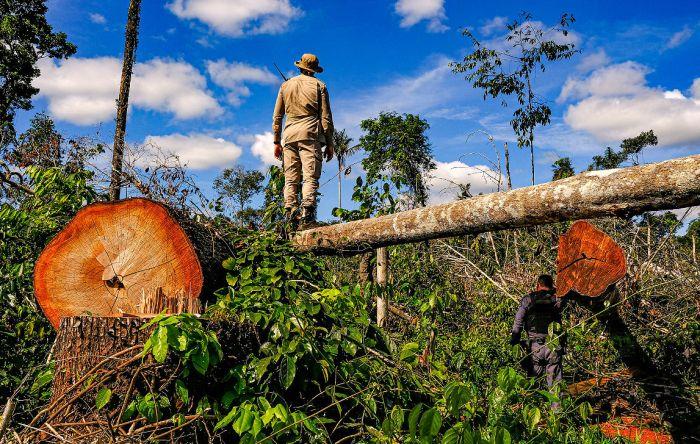 Dieese defende 'empregos verdes' para o pós-pandemia