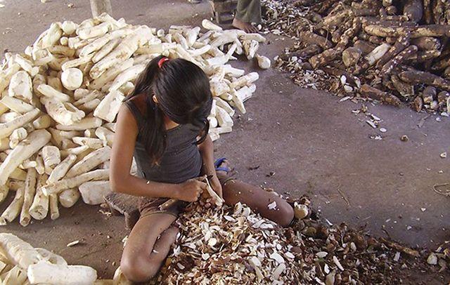 Em silêncio, 261 crianças morreram trabalhando no Brasil
