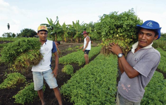 Enquanto a fome cresce no Brasil, Bolsonaro reduz recursos para agricultura familiar