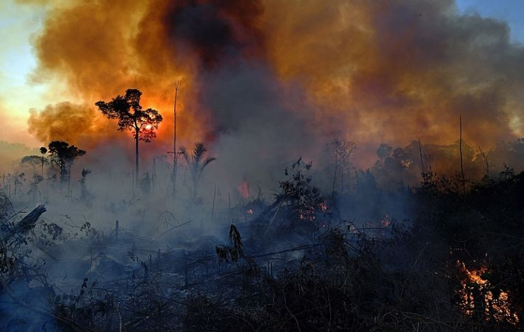 Fusão entre Ibama e ICMbio irá paralisar políticas ambientais, alerta servidor