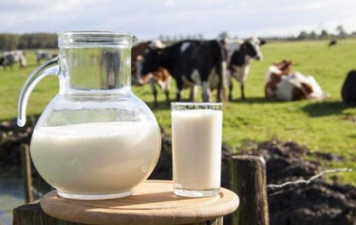Governo acaba com tarifas de importação de leite e coloca setor em risco