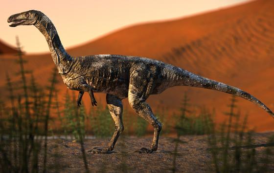 Já à venda selos estampados com dinossauros descobertos em Cruzeiro do Oeste