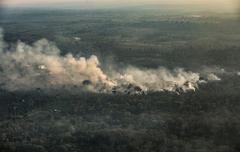Nem caboclos, nem indígenas: desmatamento e grilagem queimam a Amazônia, diz estudo