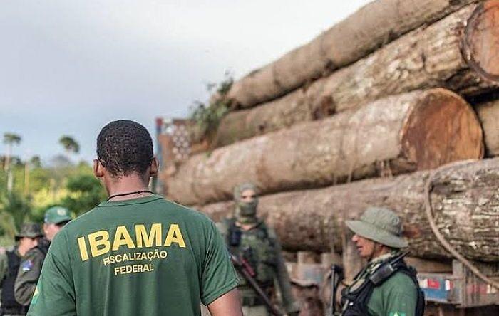 No governo Bolsonaro, número de fiscais do Ibama despencou e desmatamento disparou