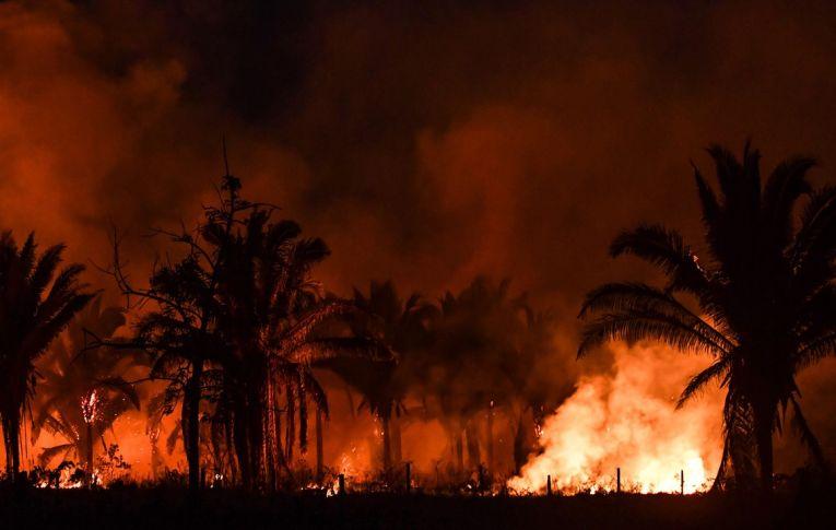 Nos bastidores, PF descarta envolvimento de ONG em incêndios na Amazônia