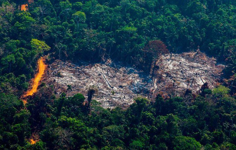 O Plano de Bolsonaro: Paranoia Amazônia