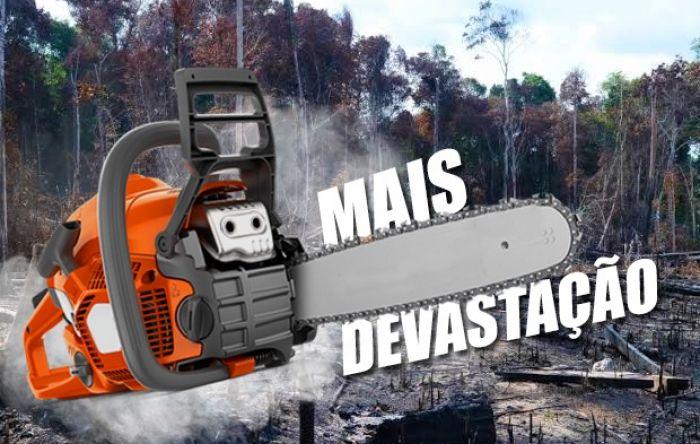 PEC dos Fundos vai acabar com políticas de combate ao desmatamento na Amazônia