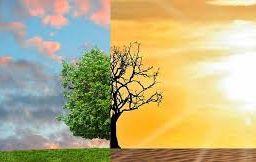 Por que a mudança climática não interessa aos economistas