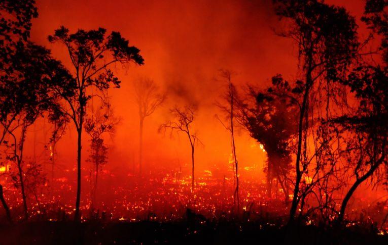 Por que as queimadas estão castigando tanto nossas florestas este ano?