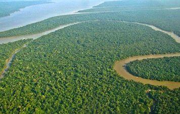 PT entra com ação contra Temer por revelação antecipada de extinção de reserva na Amazônia