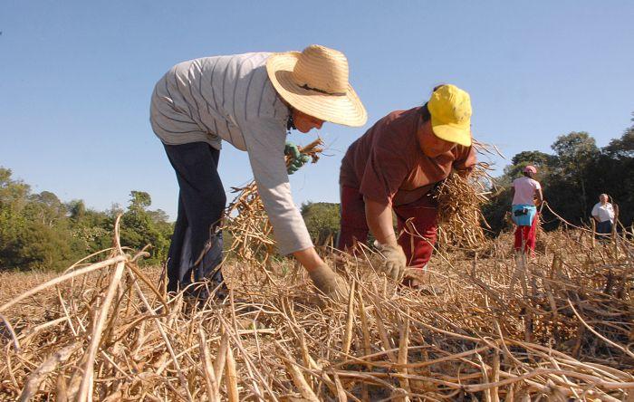 Temer não assenta nenhuma família e corta orçamento da agricultura familiar