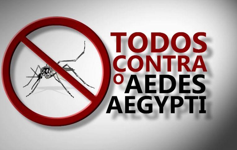 URGENTE! Aedes Aegypti torna-se uma grande ameaça para a saúde nas Regiões Oeste e Noroeste do Paraná